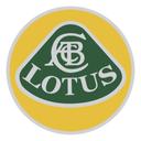 Lotus Logo Brand Icon