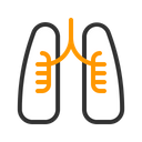 Lungs Medical Care Icon
