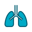Respiratory Organ Breath Icon