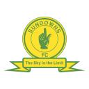 Mamelodi Sundowns Company Icon