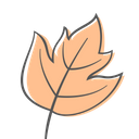 Maple Autumn Plant Icon