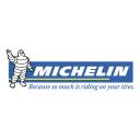 Michelin Icon