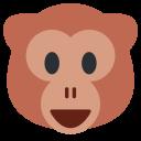 Monkey Face Human Icon