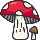Mushroom Nutrition Fungi Icon