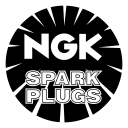 Ngk Icon