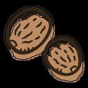 Nutmeg Herb Spice Icon