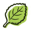 Oregano leaf Icon