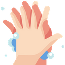 Palm to palm Icon