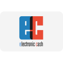 Payment Electronic Cash Icon