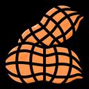 Peanut Nut Ground Nut Icon