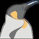 Penguin Animal River Icon