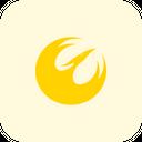 Phoenix Squadron Icon