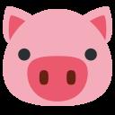 Pig Face Sus Icon