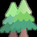 Spring Season Pine Icon