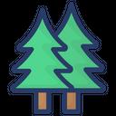 Conifer Douglas Fir Fir Tree Icon