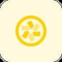 Pivotaltracker Icon