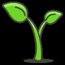 Plant Growth Tree Icon