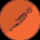 Postman Technology Logo Social Media Logo Icon