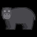 Hippo Pygmy Animal Icon