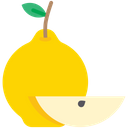Quince Icon