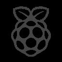 Rasberry Icon