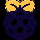 Raspberrypi Icon