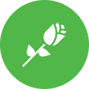 Rose Day Love Icon