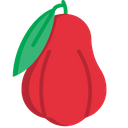 Roseapple Icon