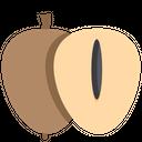 Sapodilla Icon