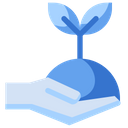 Plant Sapling Sprout Icon