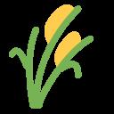Sheafofrice Icon