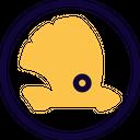Skoda Icon