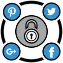 Social Media Security Icon