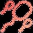 Sperm Reproduction Fertility Icon