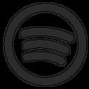 Spotify Logo Social Media Icon