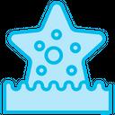 Starfish Sea Aquatic Icon