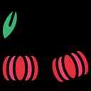 Surinam cherry Icon