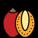 Tamarillo Icon