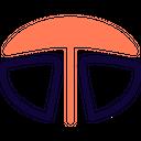 Tata Icon