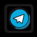 Telegram Social Media Network Icon