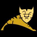 Tomcat Icon