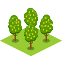 Tree Pear Icon