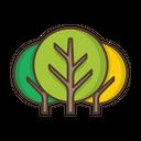 Trees Deciduous Icon