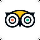 Tripadvisor Brand Logo Icon