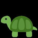 Turtle Terrapin Tortoise Icon