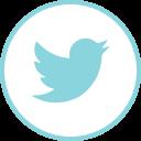 Twitter Social Logos Icon