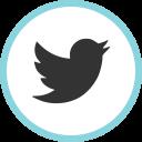 Twitter Media Social Icon