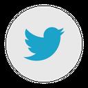 Twitter Social Media Logo Icon