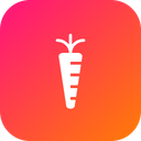 Vegetable Carrot Healthy Icon