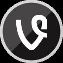 Vine Social Media Icon